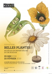 "Call for Papers für die Studientage ""Botany and its teaching objects, from yesterday to today, from school to university"""